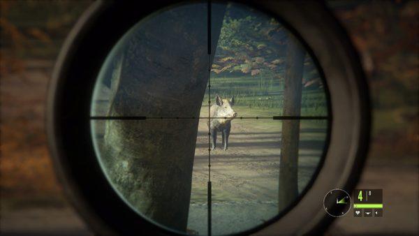 El jabalí, una de las muchas especies presentes en el juego